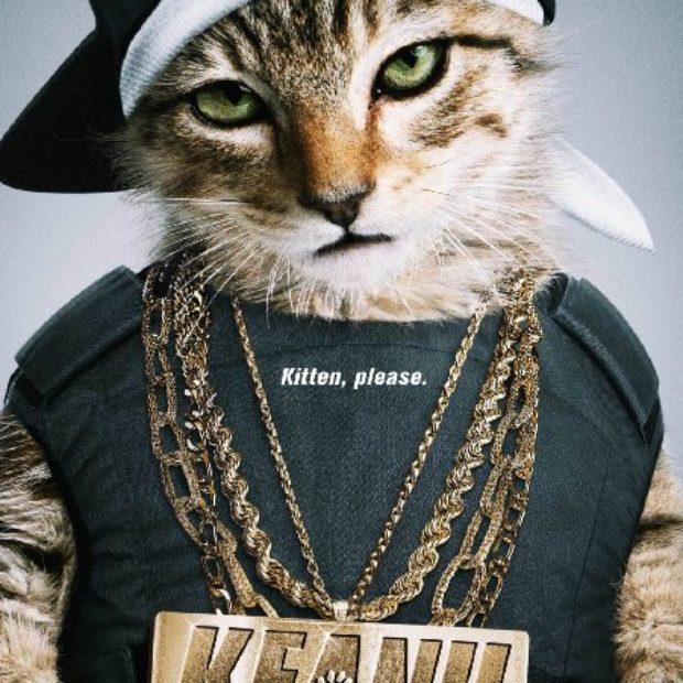 Keanu Review
